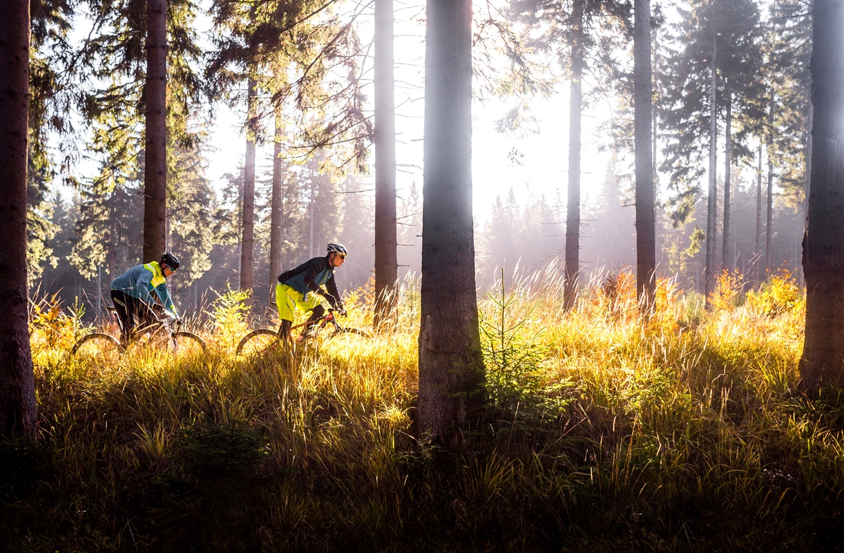 On Your Mark, Get Set, Cycle! The 10 Best Single Tracks in the Czech Republic