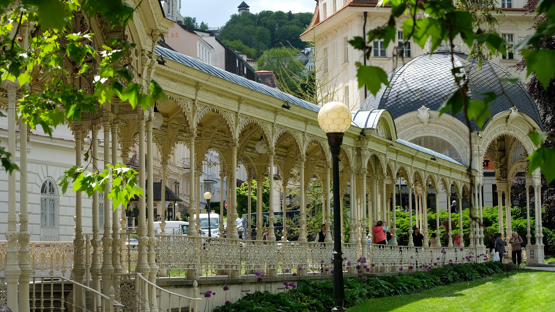 Wellness and SPA in the Karlovy Vary region