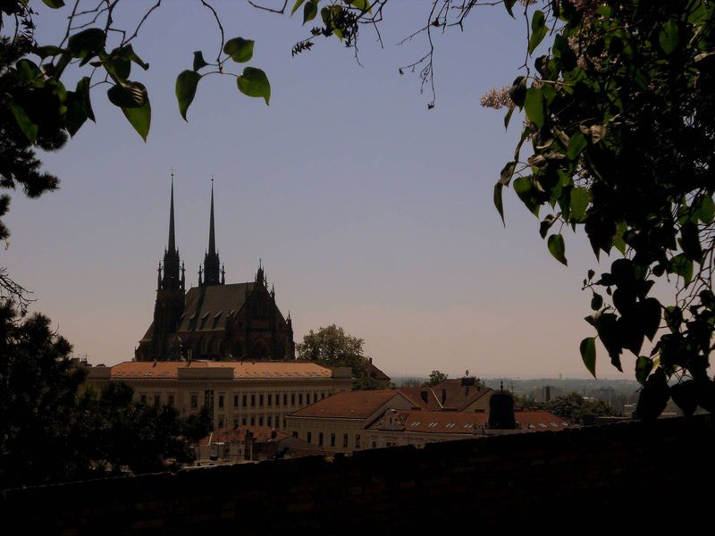 c-brno-st-peter-and-pauls-cathedral-2