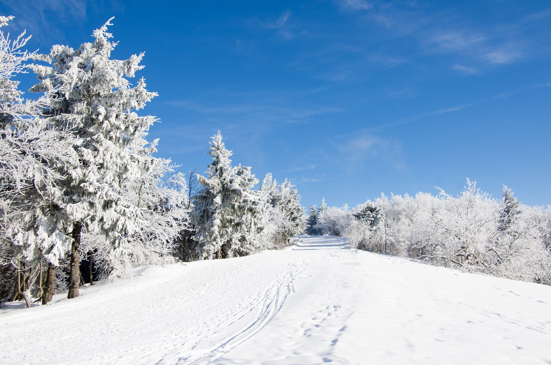 Beskids - Cross-country route